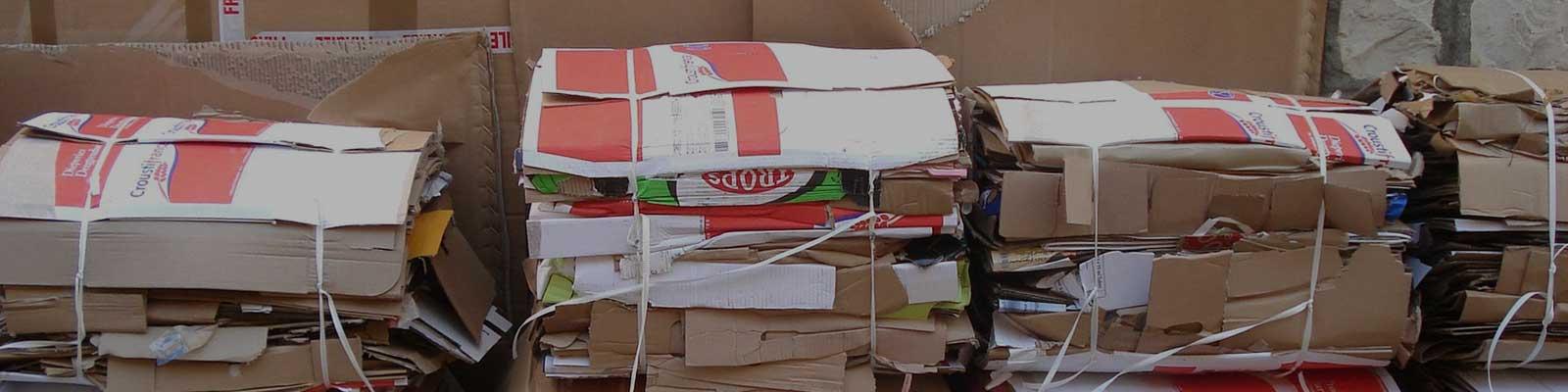 cartons3.jpg